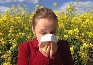 Pylová sezona je letos extrémně silná.