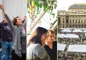 Víkend v Praze plný zábavy: Užijte si Žižkovskou noc, festivalovou jógu i voňavé orchideje