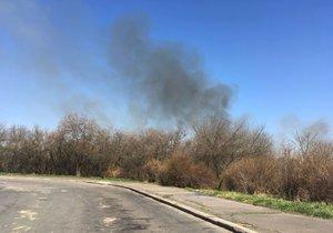 Požár u Hostivařské přehrady: Hasiči se živlem bojovali na půlkilometrovém úseku