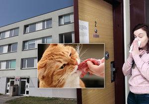 Obyvatele domu v Horních Počernicích štve zápach, který způsobují kočky.