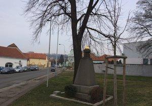 U památníku bude vysazen Strom republiky.