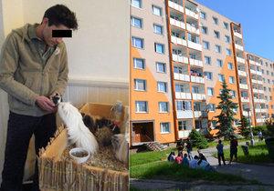 Střelec z Chomutova u soudu: Za vraždu mu hrozí až 20 let!