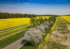 Teplé jarní počasí v Česku pokračuje.