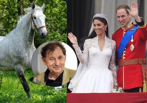 """""""Padlo to na mě."""" Diplomat urovnával trapas Česka s koňským darem na královskou svatbu"""
