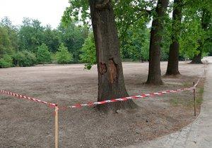 Lesy hlavního města Prahy obnovují trávník ve Stromovce, prosí návštěvníky o ohleduplnost.