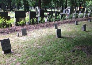 Rozsáhlá exhumace masových hrobů v Ďáblicích? Expert památkářů se přiklání k variantě ponechat místo v pietě bez zásahu.