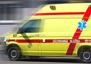 Tři osobáky a kamion v sobě: Hromadnou nehodu nepřežila žena, zraněné je i miminko