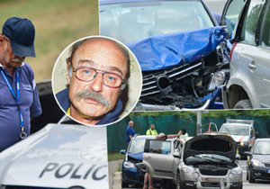 Autonehoda Pavla Nového