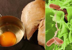 Vejce a kuřecí maso – nejrizikovější potraviny ve vedrech.