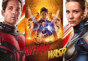 Ant-Man a Wasp: Mravenčí frajer a vosí kočka se dali dohromady, aby to natřeli padouchům od 5. 7. 2018 v kinech.