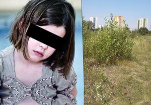 V této ostravské lokalitě, která je využívána bezdomovci, měl zatím neznámý muž znásilnit osmiletou holčičku.