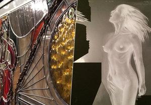 Výstava Prague Art Cocktail nabízí soudobou tvorbu domácích i zahraničních umělců.