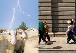 Extrémní počasí si vybírá krutou daň: ve Španělsku umírali lidé, v Srbsku blesk zmasakroval stádo ovcí (3. 8. 2018).