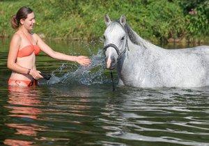 V létě ochlazení ve vodě uvítají lidé i zvířata.
