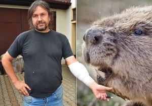 Agresivní bobr napadl Jaroslava u Plzně: Vykousl mu maso!