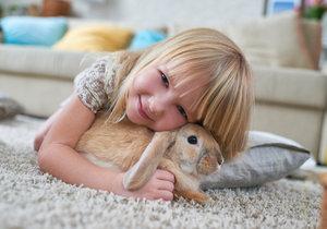 Možná vás překvapí, že králíčci jsou čistotní, společenští, přátelští a překvapivě chytří.