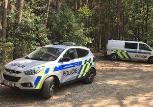 V lese v obci Březová jižně od Prahy nalezli mrtvého člověka.