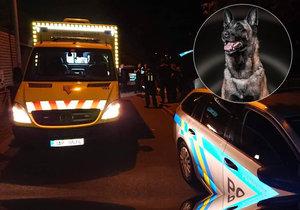 Policejní pes Connor si došlápl na násilníka.
