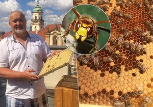 Pan Zdeněk Růžička se včelám věnuje svůj život. I přes každoroční nadílku žihadel se o ně stará takřka s otcovskou péčí.