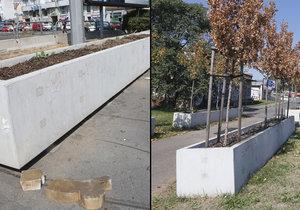 Obrovské betonové truhlíky radnice rozdala za odvoz.