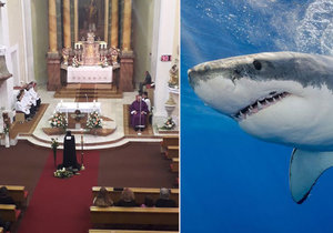 Poslední sbohem Petrovi, kterého roztrhal žralok: Rodina se loučila nadvakrát