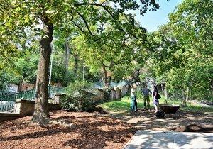 U Nuselských schodů vzniká mini-park. Zasadili se o něj zdejší obyvatelé.