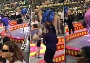 Panika v cirkuse: Splašený velbloud zranil šest dětí!
