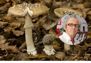 Otrav houbami bude přibývat, soudí přední toxikolog RNDr. Jaroslav Klán