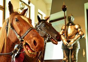Koně z Letenského kolotoče