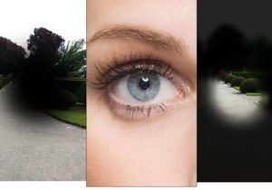 Umíte si představit, co vidí lidé s poškozením očí?
