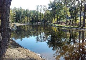 Rybník Lipiny na okraji Modřanské rokle