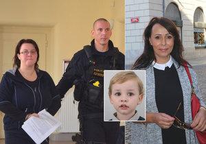 Matka uneseného Tomáška (4), prasynovce Heidi Janků: Čeká ji vyšetření u psychiatra.