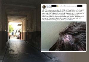 Jak to bylo s napadením mladé herečky v baru na Vinohradské? Obsluha vypráví jiný příběh než poraněná žena.