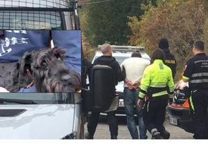 Šílenec v Nebušicích postřelil dva psy! Našli u něj zbraně, je podezřelý z ublížení na zdraví a výtržnictví