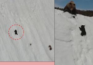 Medvídě zápasilo se zasněženou horou, na vyšplhání mu nezbývaly síly