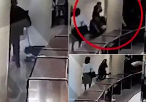 V Moskvě v cirkuse napadl levhar čtyřletou dívku