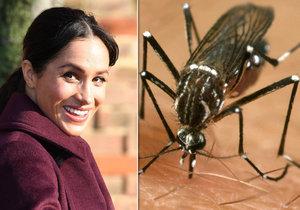 Meghan se bojí návštěvy Zambie kvůli Zika viru.
