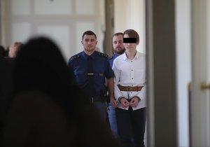 Pokus o vraždu studentky v Horních Měcholupech: Mladík si odsedí čtyři roky, dívka tři. K činu ho navedla
