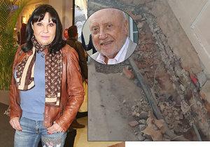 Dáda Patrasová si zoufá, že Felix Slováček zmizel z domu, zrovna když probíhá přestavba koupelny.