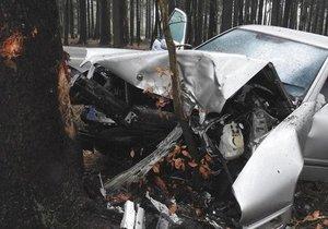Řidič vyjel ze silnice a narazil do stromu. Nehodu nepřežil (ilustrační foto)