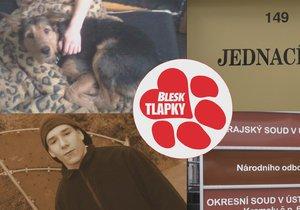 Klaus ubil svého psa kvůli štěkání. Teď se znovu vyhýbá spravedlnosti