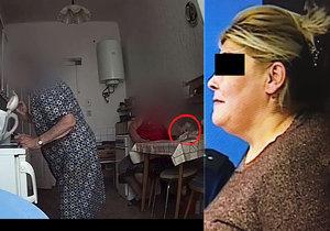 Městský soud v Brně podvodnici a zlodějce Evě L. (55) spočítal část jejích nekalostí. Půjde na dva roky do vězení s ostrahou.