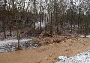 Rokytku musejí lesníci zbavit bahna. Může za to nedávná havárie vody