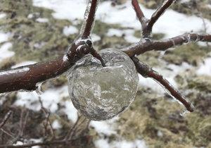 Mrazy v USA vytvořily záhadná ledová jablka. Umožnila to série specifických podmínek.
