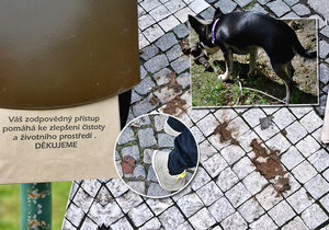 Žižkov jde do boje s exkrementy