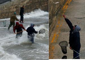 Maltu potkala intenzivní bouře, v rámci které padaly z nebe ryby. Lidé je chodili sbírat na nábřeží