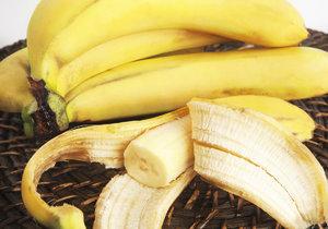 Nejoblíbenější odrůdou banánů jsou banány Cavendish. Jejich osud je ale nejistý