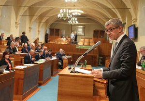 Premiér Andrej Babiš v Senátu