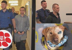 Tyran Ronnyho jde definitivně za mříže. Soud mu ale trest zmírnil