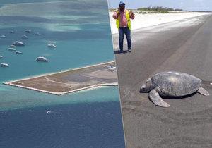 Srdcervoucí záběry z Malediv: Želva se vrátila naklást vajíčka na rodnou pláž, našla jen asfalt nové ranveje